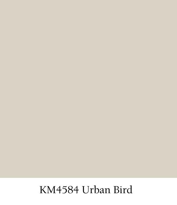 blogs - km4584-urban-bird.jpg