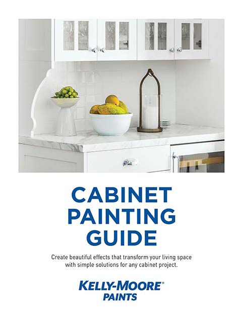 Cabinet Painting Guide