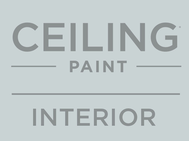 Ceiling Paint Interior