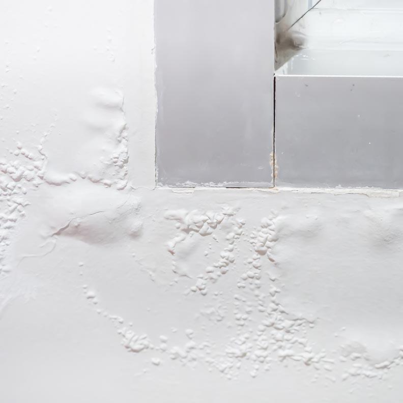Paint Problems & Solutions